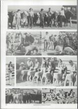 1975 Hermleigh School Yearbook Page 40 & 41
