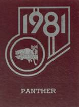 1981 Yearbook Yellville-Summit High School