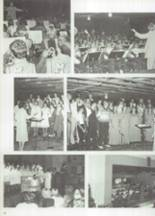 1981 Mater Dei Catholic High School Yearbook Page 96 & 97