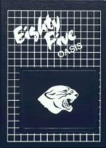 1985 Yearbook Spring Lake Park High School