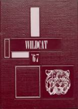 1967 Yearbook Edmonson County High School