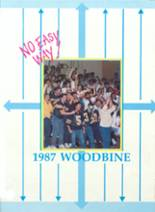1987 Yearbook James Wood High School