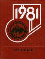1981 Yearbook Grantsville High School