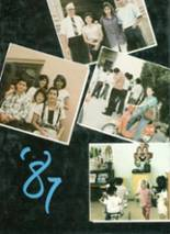 1987 Yearbook Austin High School