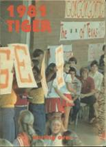 1981 Yearbook Texas High School