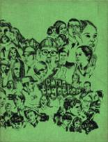 1971 Yearbook Badin Catholic High School