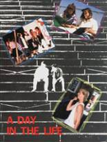1988 Yearbook Dana Hills High School