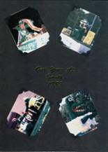 1989 Yearbook Crystal Lake South High School