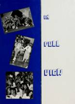 1988 Yearbook Stroman High School