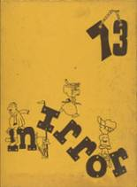 1973 Yearbook Montour High School