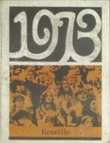 1973 Yearbook Dexter High School
