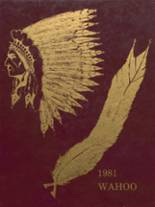 1981 Yearbook Dowagiac Union High School